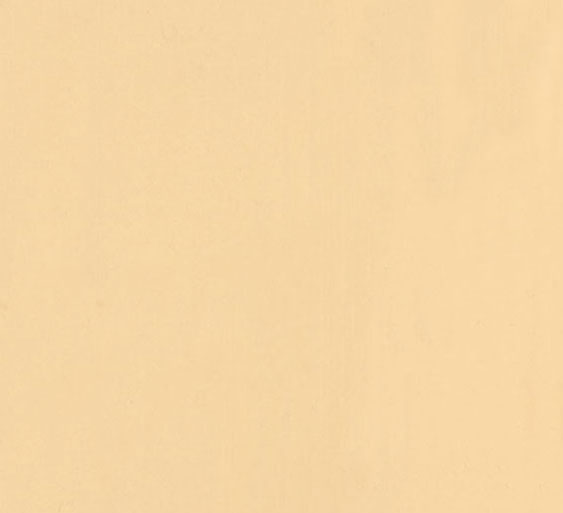 coloris PVC beige